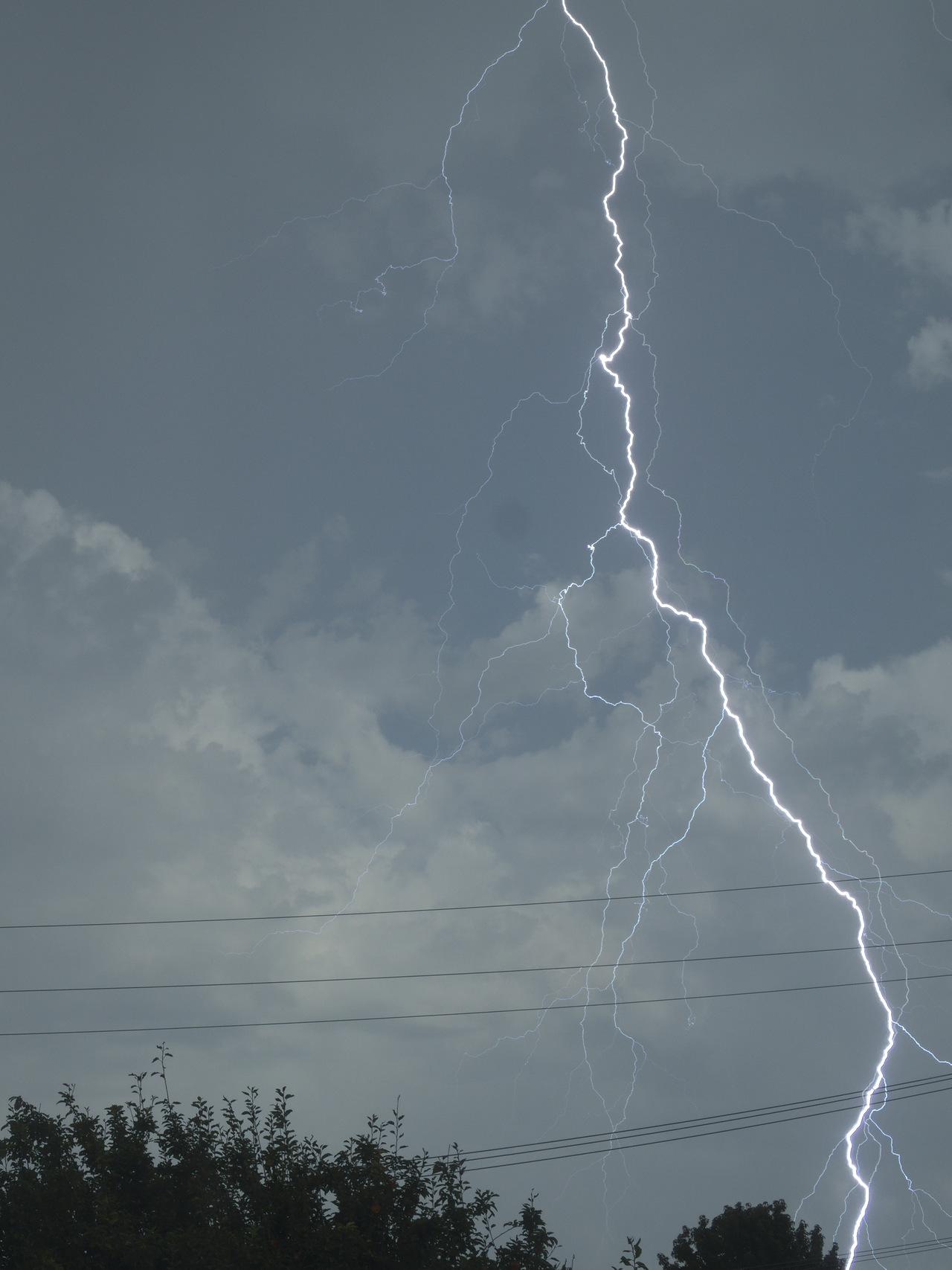 Lightning by reyalp