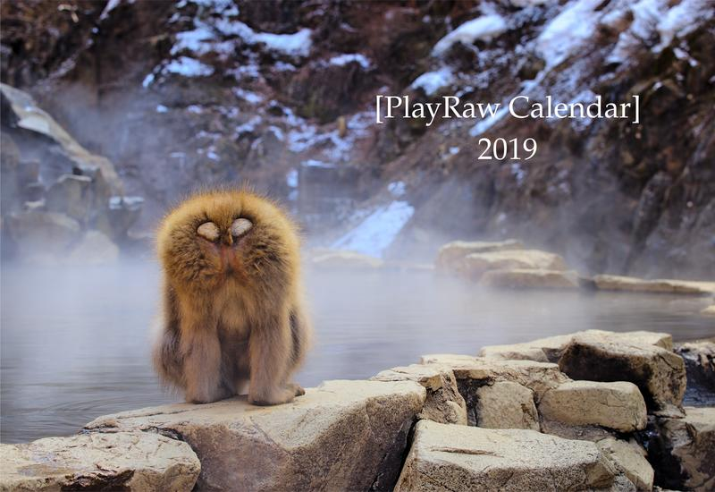 Play Raw Calendar 2019